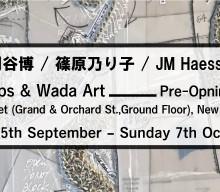 Mizuma, Kips & Wada Art | Opening of New York gallery space