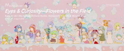 Eyes & Curiosity—Flowers in the Field