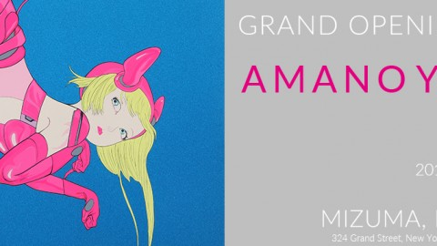 "Grand Opening of Mizuma, Kips & Wada Art, New York | AMANO Yoshitaka ""DEVA LOKA"""