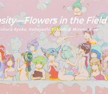 Eyes & Curiosity—Flowers in the Field