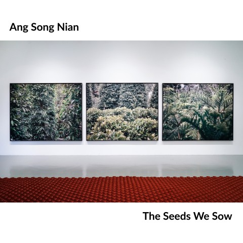 """""""In Conversation with Ang Song Nian"""" 