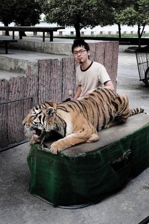 The Origin of Invented Species: Robert Zhao Renhui | ArtAsiaPacific